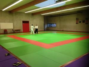 Ma soirée a Aikido club  Guichennais dans mes dojos img_1803-300x225