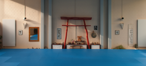 aikido_unlimited-300x137