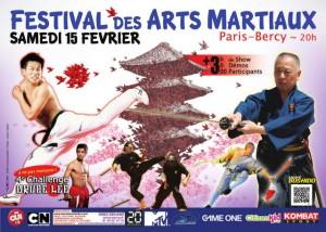 festival-arts-martiaux-2014